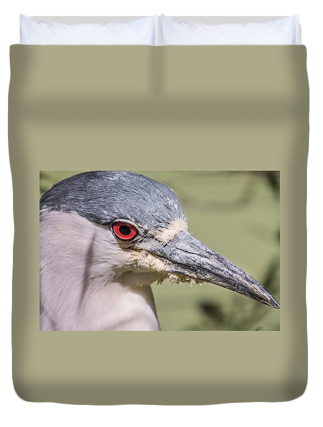 Bird Duvet Cover featuring the photograph Red Eye by Jessica Brown
