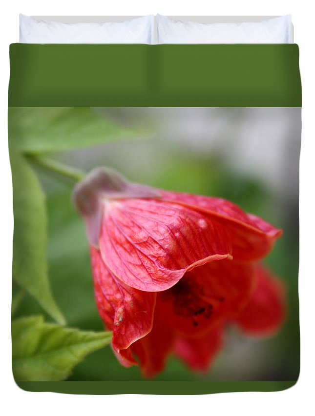 Red Flower Flowers Red Blooming Flourish Blossom Blooms Duvet Cover featuring the photograph Red Flower by Ginka Andreeva