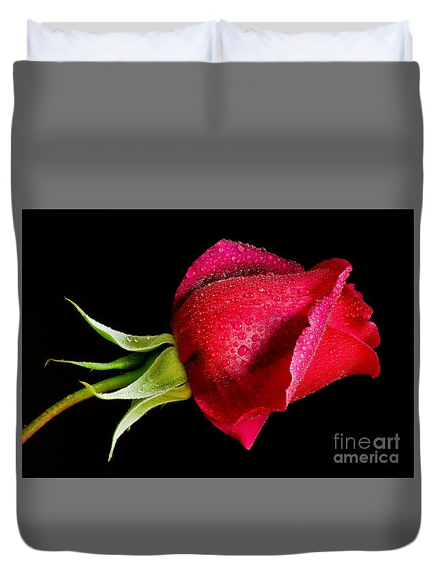 Oregon Duvet Cover featuring the photograph Red Hot by Nick Boren