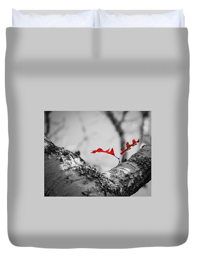 White Oak Duvet Cover featuring the photograph Red Leaf by Debbie Karnes