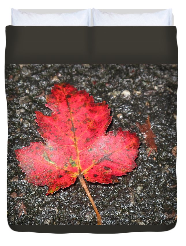 Leaves Duvet Cover featuring the photograph Red Leaf On Pavement by Barbara McDevitt