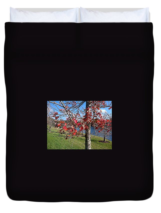 Red Duvet Cover featuring the photograph Red Leaves by George Pedro