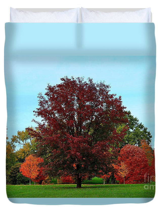 Red Oak Duvet Cover featuring the photograph Red Oak In Loose Park by Catherine Sherman
