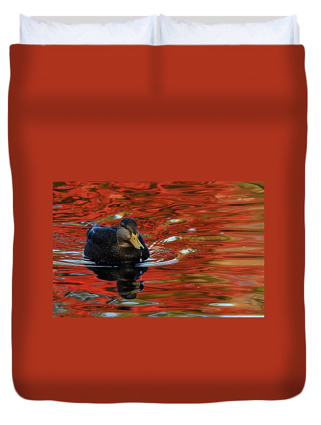 Autumn Duvet Cover featuring the photograph Red Pond by Karol Livote