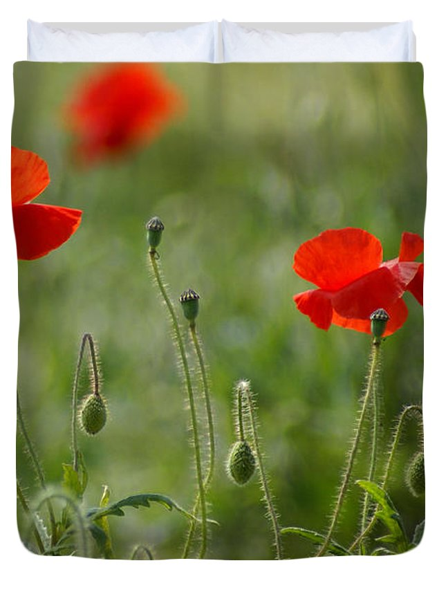 Poppies Duvet Cover featuring the photograph Red Poppies 2 by Carol Lynch