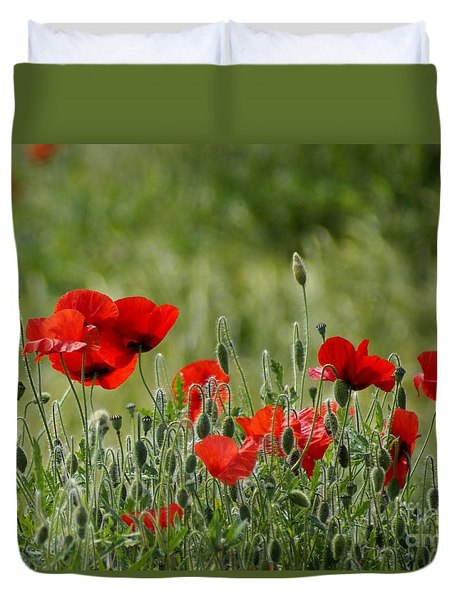 Poppies Duvet Cover featuring the photograph Red Poppies 3 by Carol Lynch