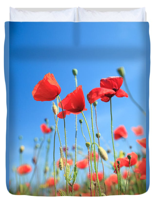 Poppies Duvet Cover featuring the photograph Red Poppies by Matteo Colombo