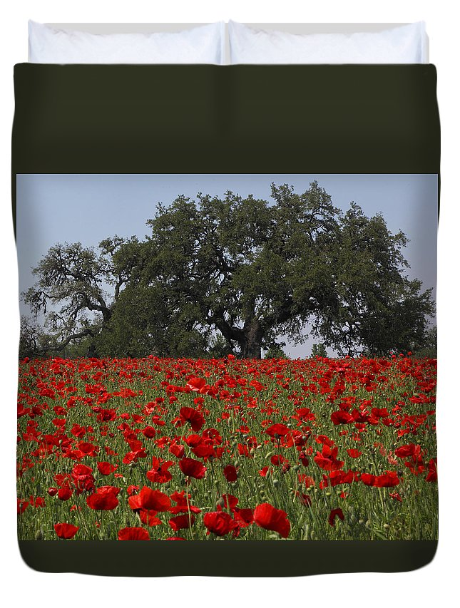 Texas Duvet Cover featuring the photograph Red Poppy Field by Susan Rovira