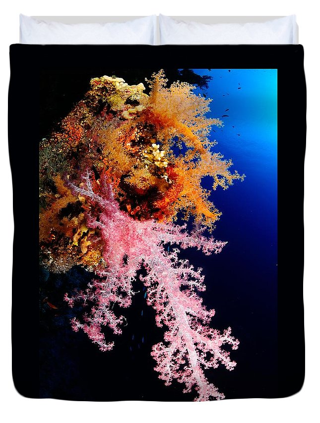 Underwater Duvet Cover featuring the photograph Red Sea Coral by Iñigo Gutierrez Photo