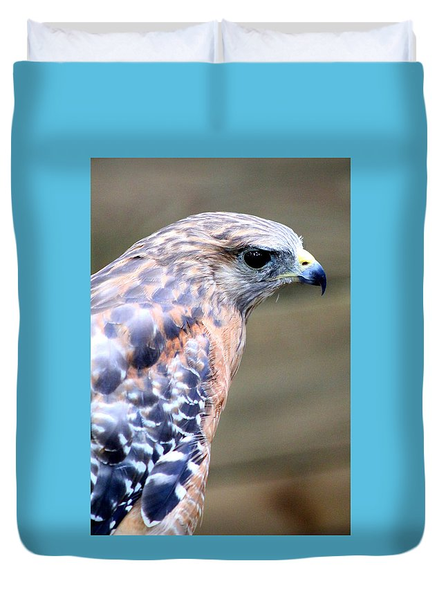 Hawk Duvet Cover featuring the photograph Red Shouldered Hawk by Kay Mathews