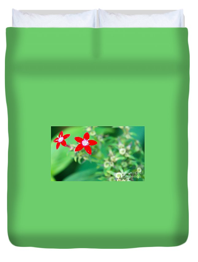 Red Flower Duvet Cover featuring the photograph Red Star by Optical Playground By MP Ray