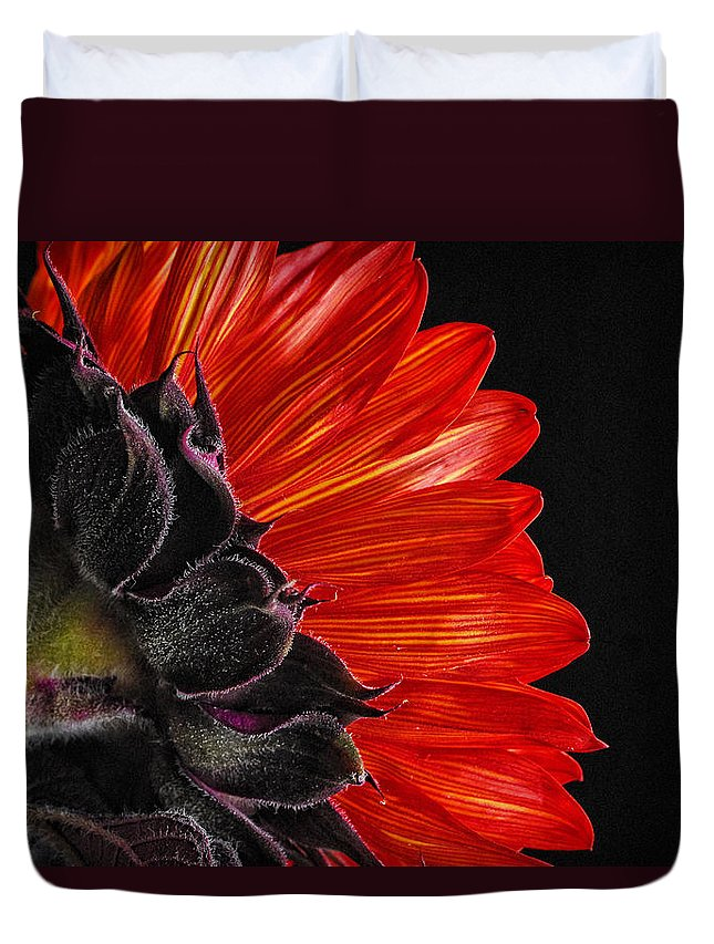 Red Sunflower Duvet Cover featuring the photograph Red Sunflower Vii by Saija Lehtonen