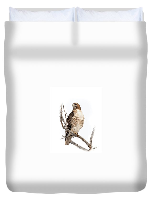 Red Tail Hawk Duvet Cover featuring the photograph Red Tail Hawk by Jim Fillpot