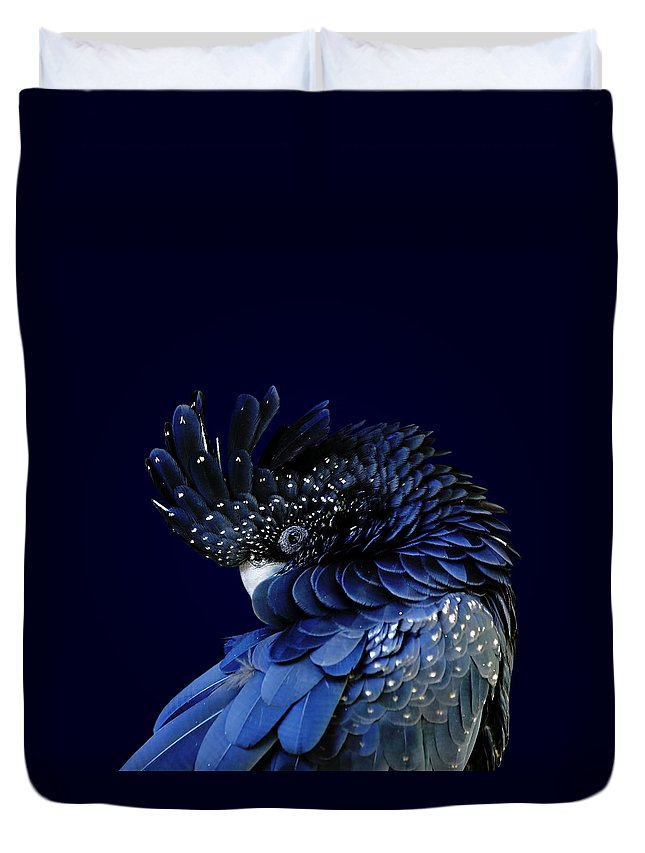 Fort Worth Duvet Cover featuring the photograph Red-tailed Black Cockatoo by © Debi Dalio