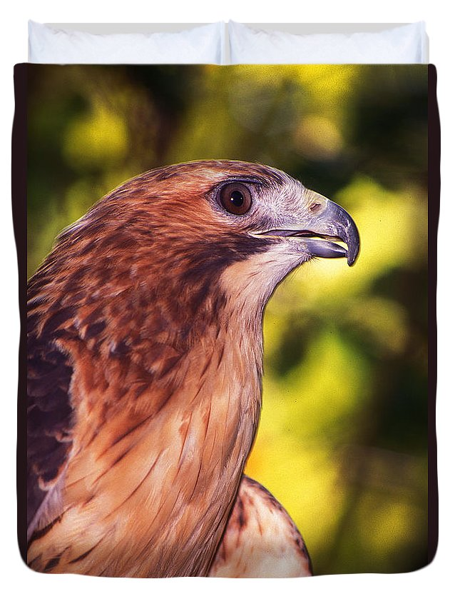 Hawk Duvet Cover featuring the photograph Red Tailed Hawk - 59 by Paul W Faust - Impressions of Light
