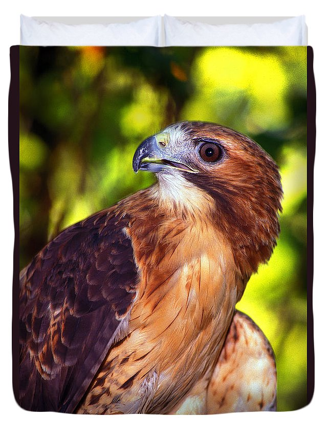 Hawk Duvet Cover featuring the photograph Red Tailed Hawk - 66 by Paul W Faust - Impressions of Light