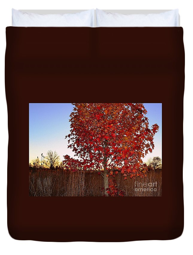 Carmel Duvet Cover featuring the photograph Red Tree At Sunset by Amy Lucid
