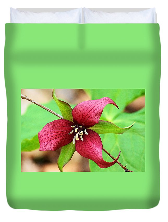 Red Trillium Duvet Cover featuring the photograph Red Trilum by J R Sanders
