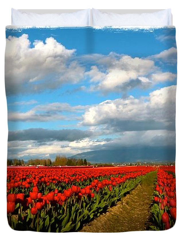 Tulip Fields Duvet Cover featuring the photograph Red Tulips Of Skagit Valley by Carol Groenen