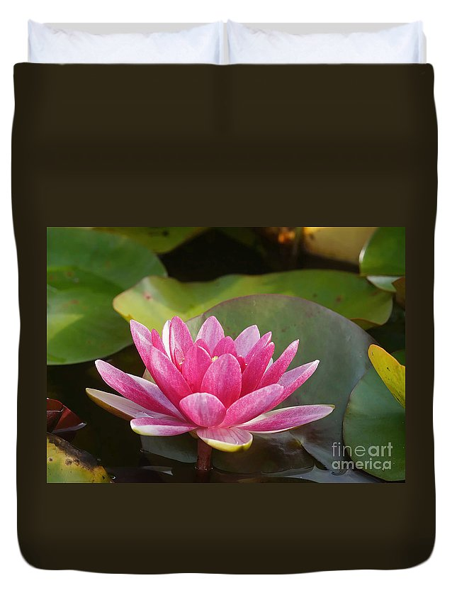 Nature Duvet Cover featuring the photograph Red Water Lily 4 by Rudi Prott
