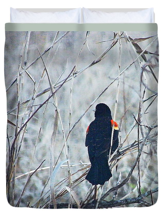 Blackbird Duvet Cover featuring the digital art Red Wing Perched by Lizi Beard-Ward