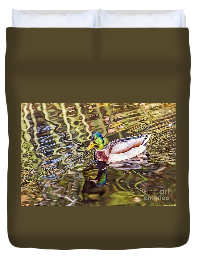 Bird Duvet Cover featuring the photograph Reflected by Kate Brown