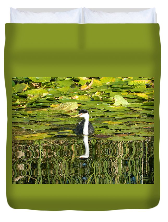 Grebe Duvet Cover featuring the photograph Reflecting Grebe by Nicki Bennett