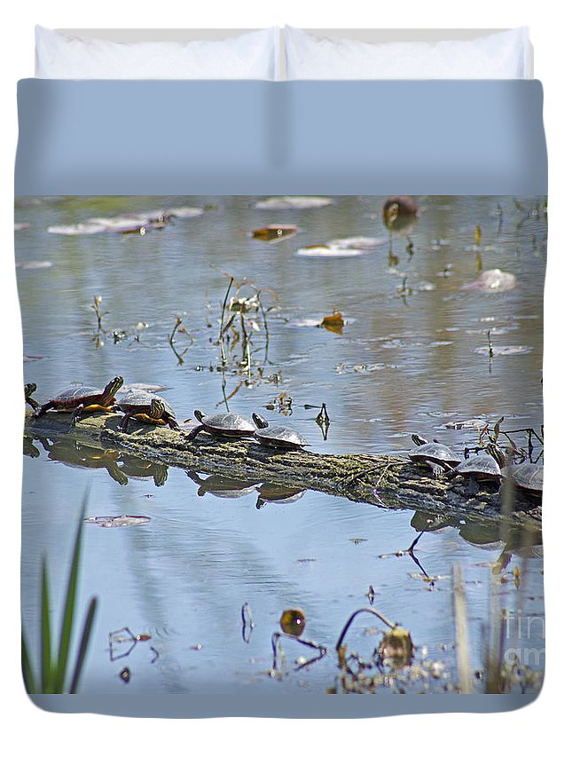 Turtles Duvet Cover featuring the photograph Reflecting On The Nice Spring Weather by Mother Nature