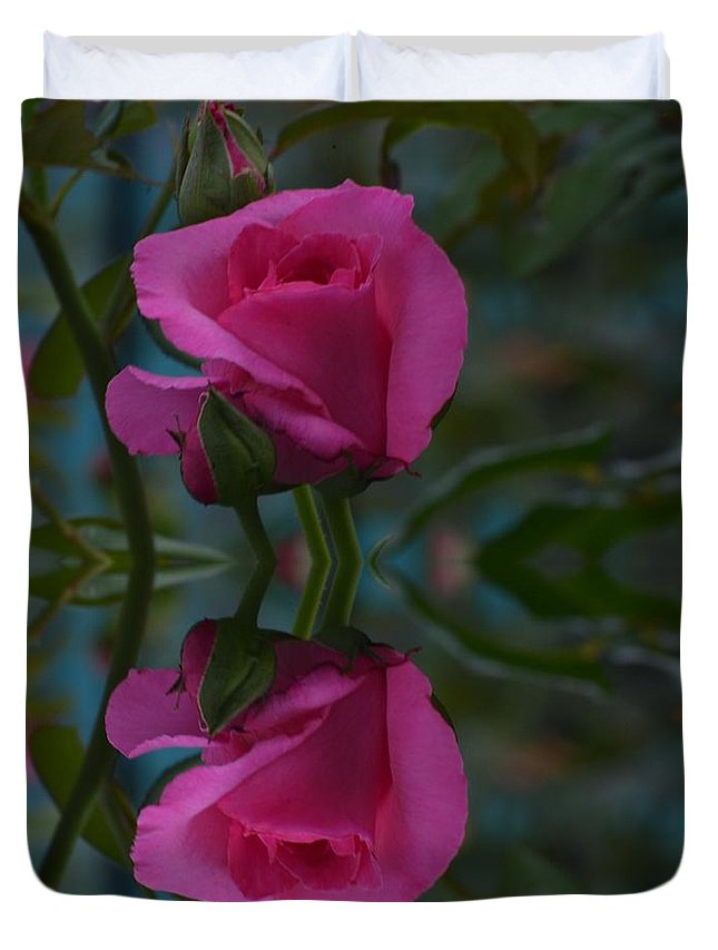 Pink Duvet Cover featuring the photograph Reflection by Judy Wolinsky
