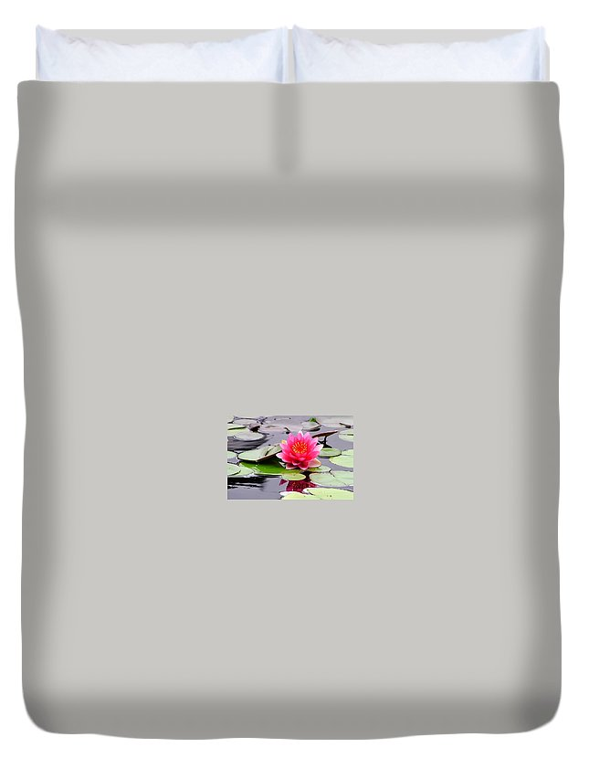 Reflections Of A Pink Waterliy Duvet Cover featuring the photograph Reflections Of A Pink Waterlily by Cynthia Woods