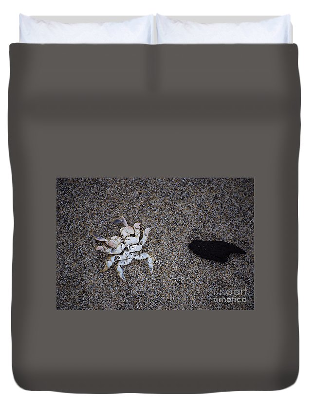 Crab Duvet Cover featuring the photograph Remains by Sharon Elliott