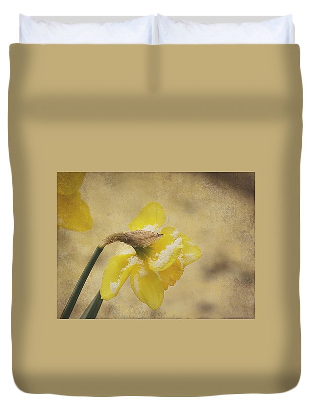 Daffodils Duvet Cover featuring the photograph Resilience by Mel Hensley