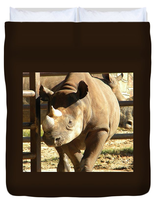 Zoo Duvet Cover featuring the photograph Rhino by Nathanael Smith