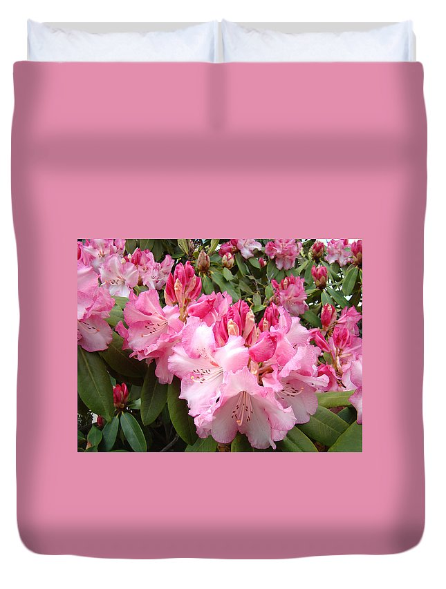 Rhodies Duvet Cover featuring the photograph Rhododendron Garden Art Prints Pink Rhodie Flowers by Baslee Troutman