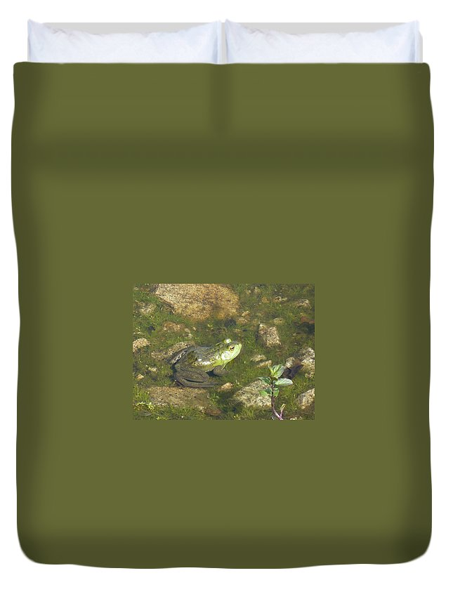 Frog Duvet Cover featuring the photograph Ribit by Nicki Bennett