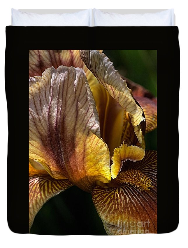 Flora Duvet Cover featuring the photograph Rich Iris by Joy Watson