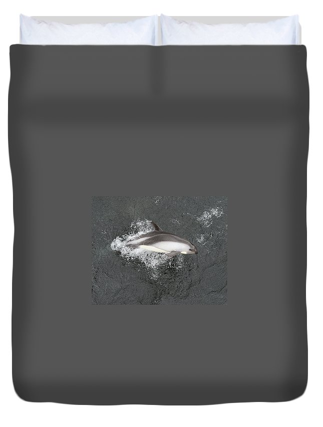 Peale's Dolphin Duvet Cover featuring the photograph Riding The Bow by Tony Beck