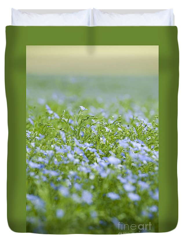 Background Duvet Cover featuring the photograph Rising Above The Rest by Anne Gilbert