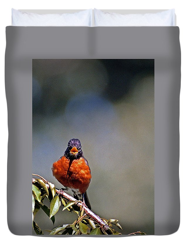 Bird Duvet Cover featuring the photograph Rockin Robin by Skip Willits