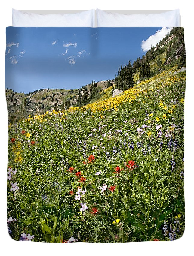 Wildflowers Duvet Cover featuring the photograph Rocky Mountain Wildflower Landscape by Timothy Flanigan