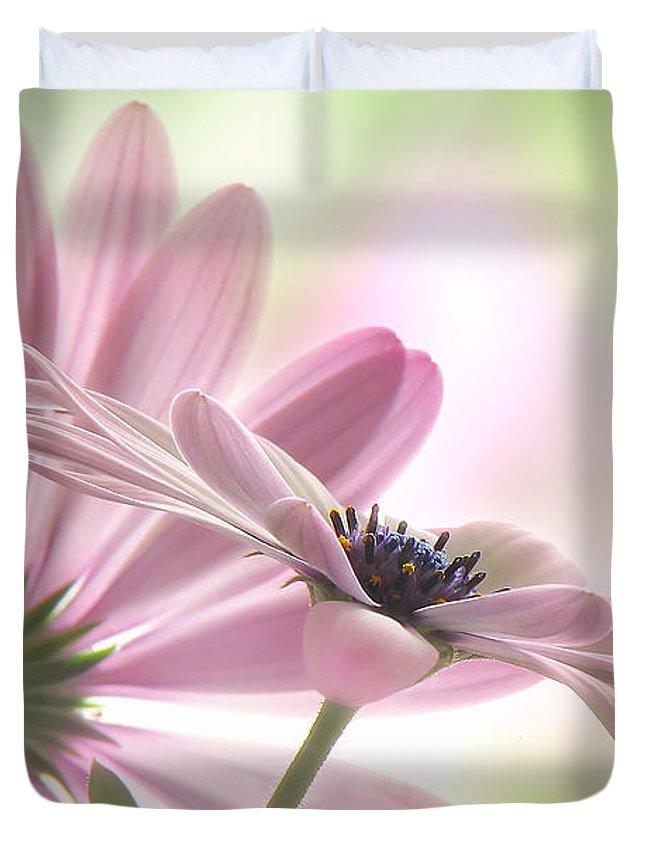 Daisy Duvet Covers