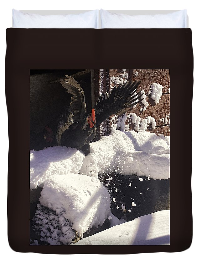 Rooster Duvet Cover featuring the photograph Rooster In Deep Snow by Michael Dougherty