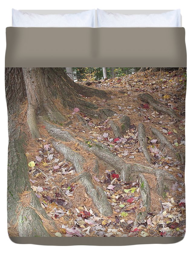 Tree Duvet Cover featuring the photograph Roots by Barbara McDevitt
