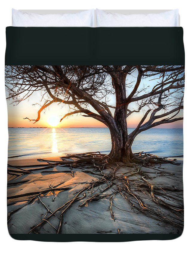 Clouds Duvet Cover featuring the photograph Roots Beach by Debra and Dave Vanderlaan