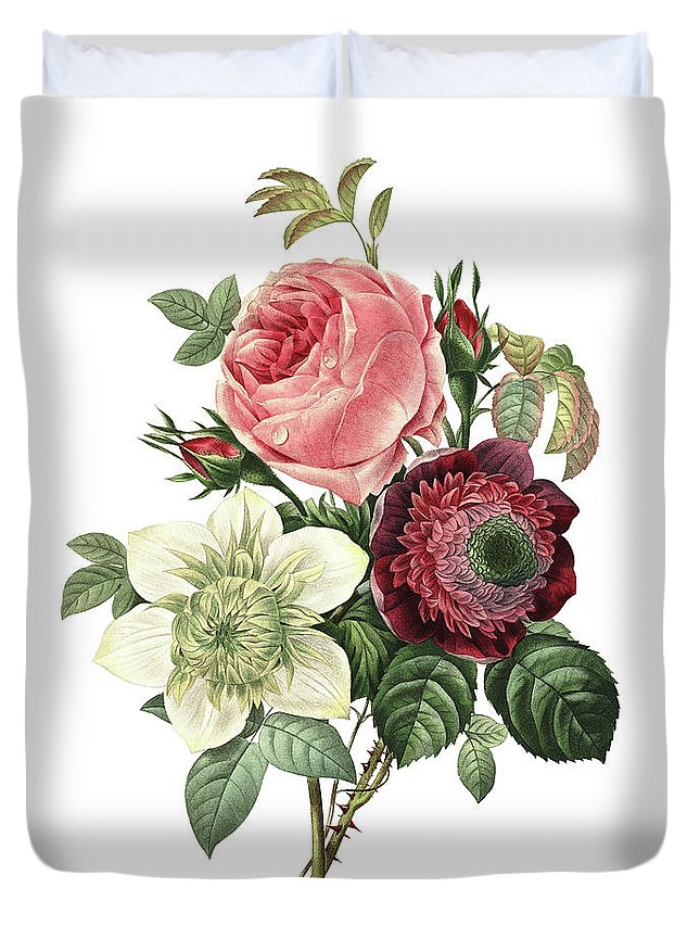 White Background Duvet Cover featuring the digital art Rose, Anemone And Clematis | Redoute by Nicoolay