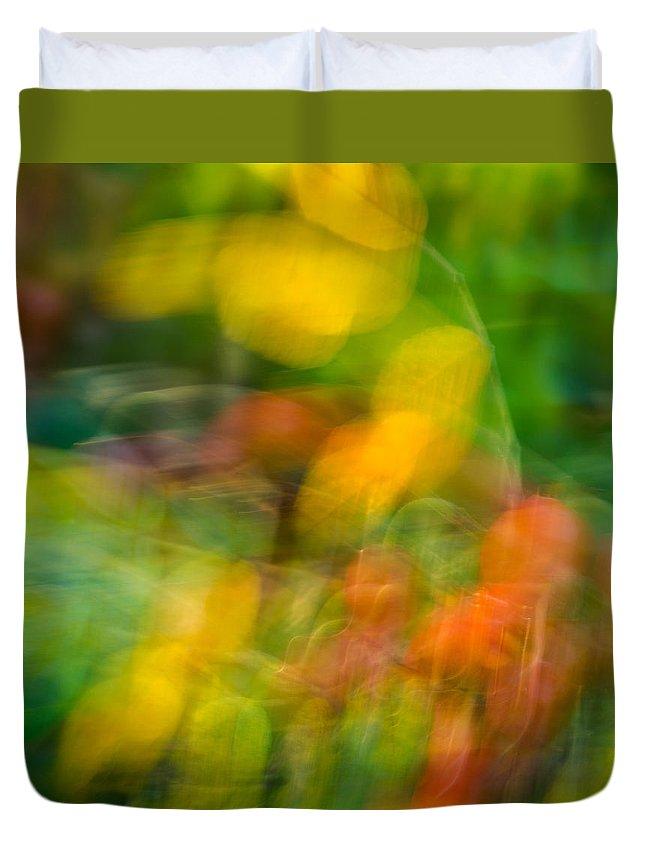 Steve Harrington Duvet Cover featuring the photograph Rose Hip by Steve Harrington
