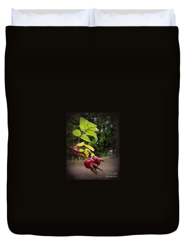 Rose Duvet Cover featuring the photograph Rose Hips Reaching by Leone Lund