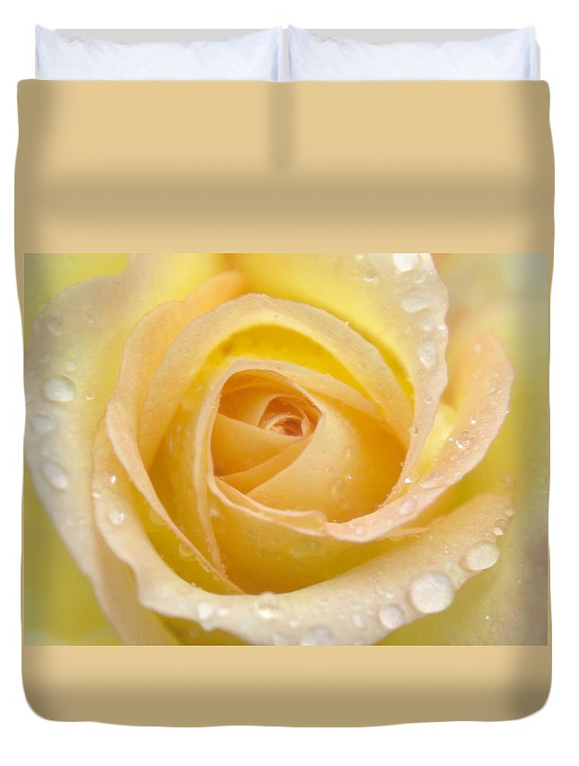 Rose Duvet Cover featuring the photograph Rose by Rachel Down