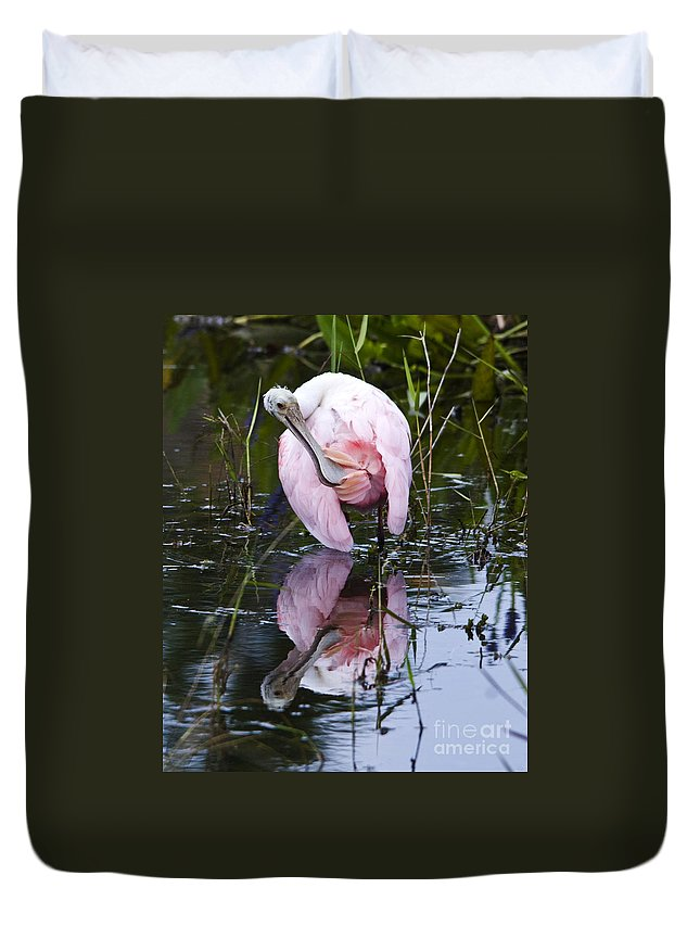 Roseate Spoonbill Duvet Cover featuring the photograph Roseate Spoonbill No.3 by John Greco