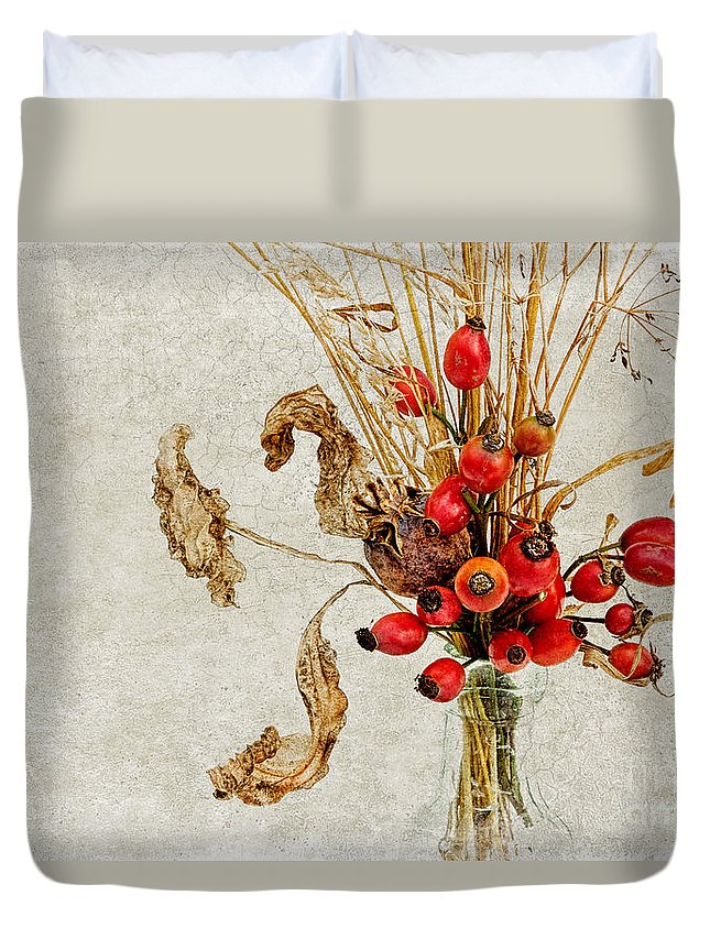 Rosehip Duvet Cover featuring the photograph Rosehips And Grasses by Ann Garrett